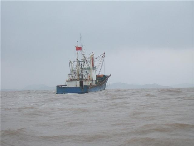 不二赶海5——风起浪涌